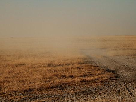 Foto von Wüste by Millstone Animation